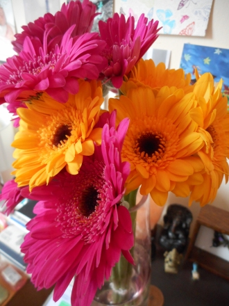 Yellow and pink Gerberas